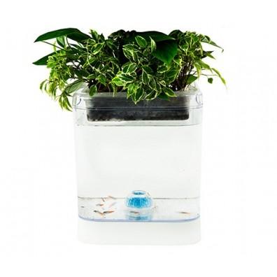 Комплек за природен аквариум Camry CR 7930, Бели LED Светлини